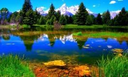 Un Thème des Œuvres #76 : Un message écologique